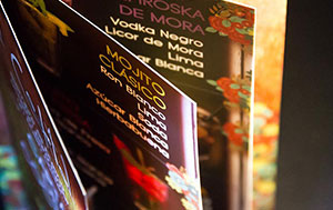 Servicio de Diseño Publicitario por MODO3